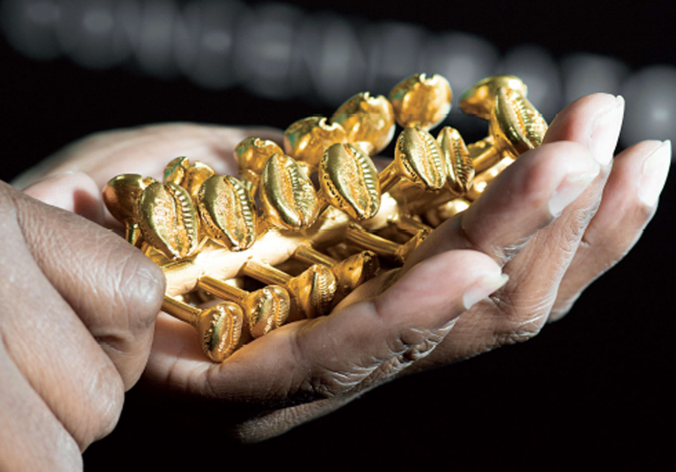 The Gold Standard of Sustainability